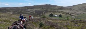 dartmoor trails 300x102 - dartmoor-trails